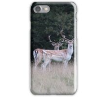 Deer Park iPhone Case/Skin