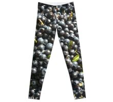 Blue Blueberry Mania Leggings