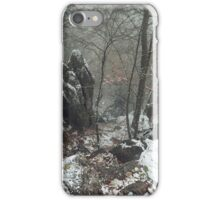 Misty Rocks.  In Mysterious Woods iPhone Case/Skin