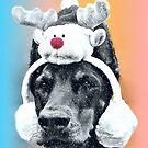 Dog wearing a Reindeer Hat by Susan S. Kline