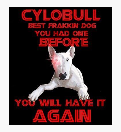 CyloBULL Photographic Print