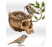 colorful illustration of birds making a nest in animal skull Poster