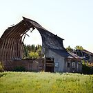 Roof and Rafters by Heather Crough