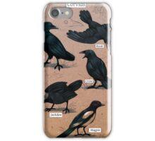 Crows Feet Corvids iPhone Case/Skin