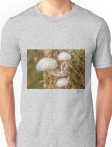 Small Porcelain Fungus toadstools Unisex T-Shirt