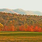 """View of the Smokies  from Mountain Home, Tennessee""... prints and products by © Bob Hall"