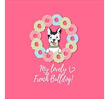 My lovely French Bulldog with donuts. Photographic Print