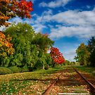 Railroad Tracks at Grand-Pre National Historic Site by kenmo