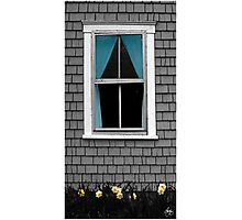 Blue Curtain and Narcissus Photographic Print