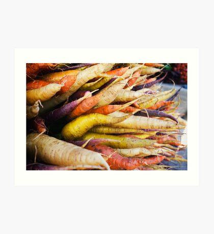 Farmers Market Multicolor Carrots Art Print