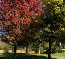 Autumn Leaves Underneath Trees Sticker