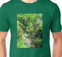Stream with Ferns, Isabella Plantation, Richmond Park, Surrey Unisex T-Shirt