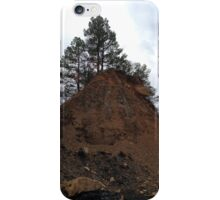 Lone Pines iPhone Case/Skin