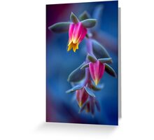 Dreaming of things succulent Greeting Card