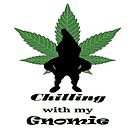 Chilling with my Gnomie by FRANKEY CRAIG