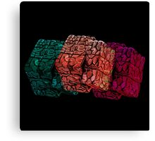 Brain cube Canvas Print