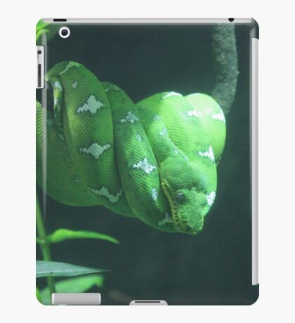 Green Tree Python iPad Case/Skin
