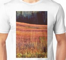 Afternoon Light in November II Unisex T-Shirt