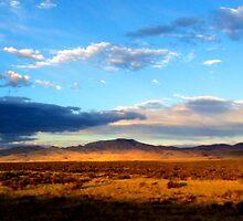Mojave Desert Golden Hour by alcological