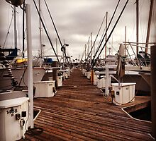The Docks at Alamitos Bay by alcological