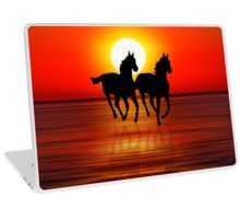 Sunset 3 Laptop Skin