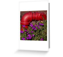 Colorful! Greeting Card