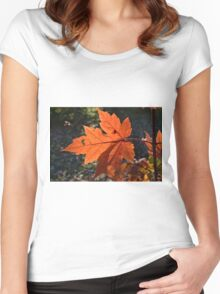Fall Maple Women's Fitted Scoop T-Shirt