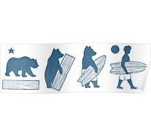 Bear Evolution Poster