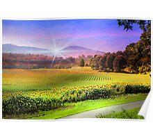 Biltmore Sunflower Field Poster