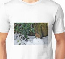 This morning through my window Unisex T-Shirt