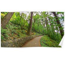 LG G5 Oregon Rainforest Poster