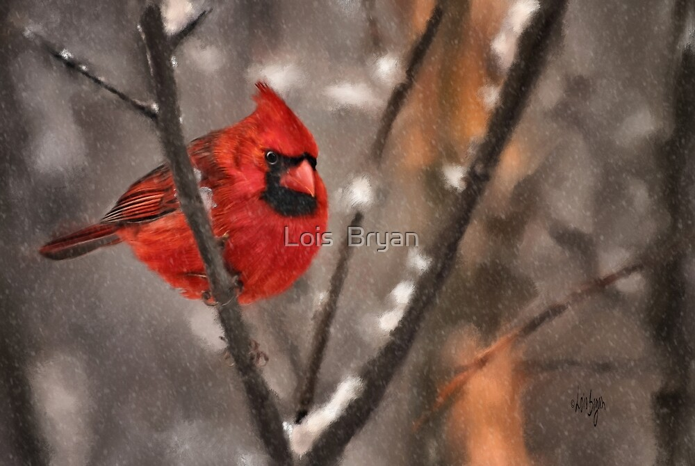 A Spot Of Color by Lois  Bryan