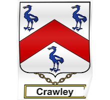 Crawley Coat of Arms (English) Poster