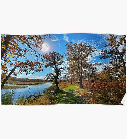LG G5 Box Alder Autumn II Poster