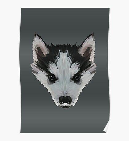 Husky dog low poly. Poster