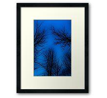 Spooky trees. Framed Print