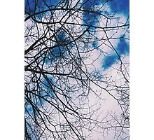 Clouds, Sky and Winter Tree Branches Photographic Print