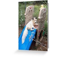 Queen Misty the Fox Greeting Card
