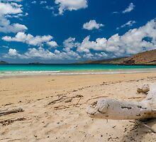 A Beach to Ourselves by MichaelJP