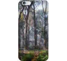Whipstick Winter iPhone Case/Skin