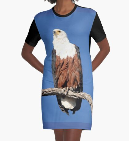 African Fish Eagle Graphic T-Shirt Dress