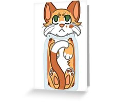 Cat Stuck in Bottle Greeting Card