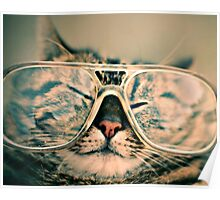Sosy Cat with Glasses Poster