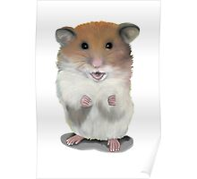 Deconstructed Hammie Poster