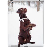 Pretty brown Labrador Retriever iPad Case/Skin