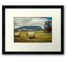 Hay Roland Framed Print