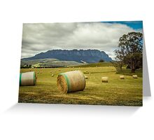 Hay Roland Greeting Card