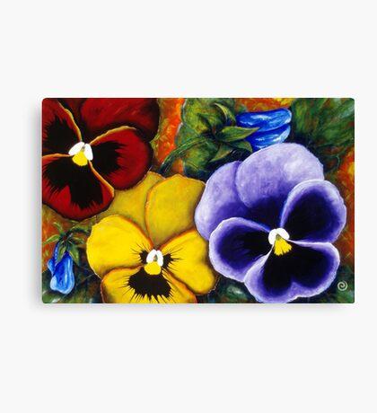 5 Pansies Canvas Print