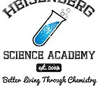 Heisenberg Science Academy by batcatgraphics