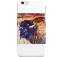King of the Plains iPhone Case/Skin